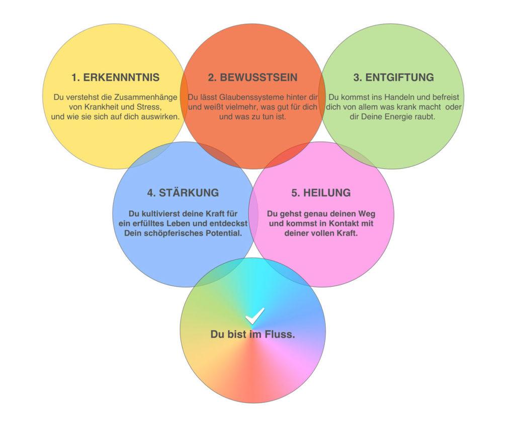 5 Phasen - Erkenntnis > Bewusstsein > Entgiftung > Heilung > Stärkung