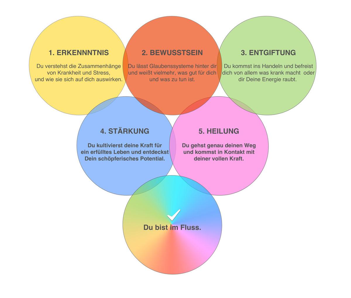 5 Phasen - Erkenntnis - Bewusstsein - Entgiftung - Heilung - Stärkung